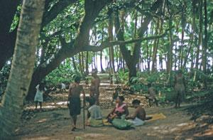 """Deposit page image for the collection """"Documenting Ramari Hatohobei, the Tobian language, a severely endangered Micronesian language"""""""