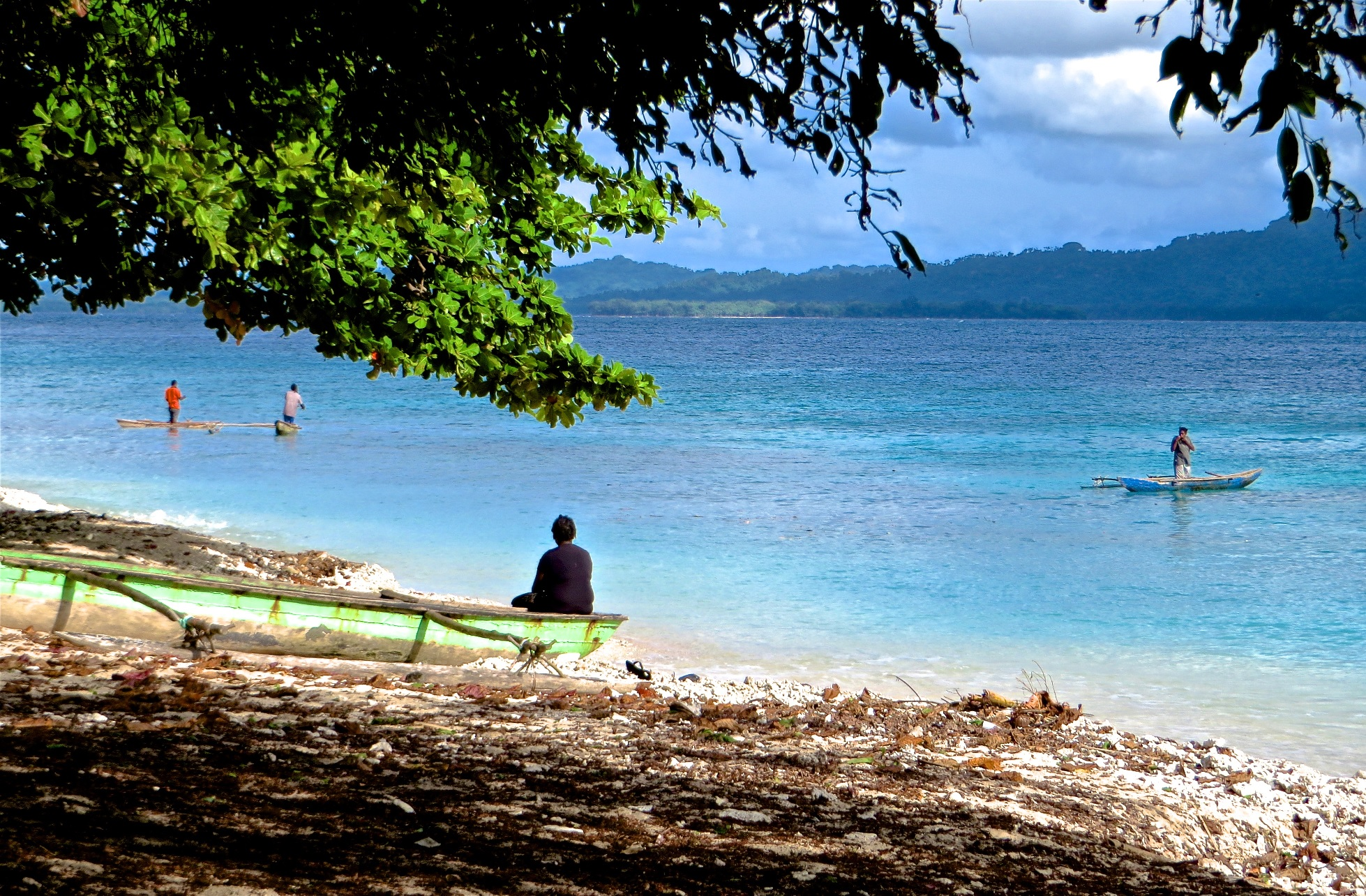 """Deposit page image for the collection """"Documenting Ahamb, a Small Island Language of Vanuatu"""""""